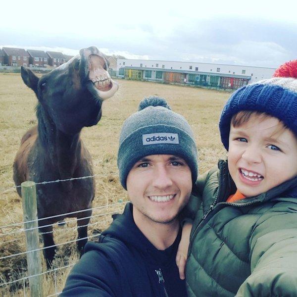 cavallo che ride foto