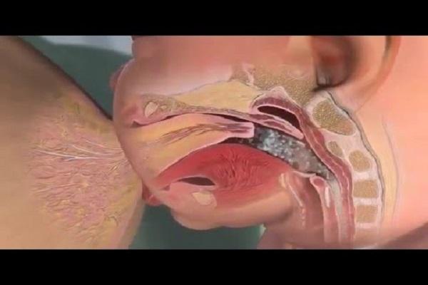 Allattamento al seno video di sesso