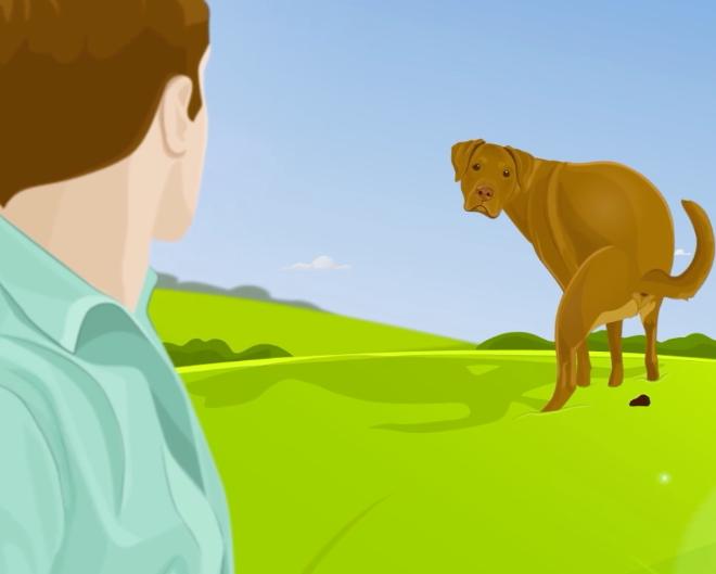 Mentre fa i bisogni il cane guarda negli occhi il padrone