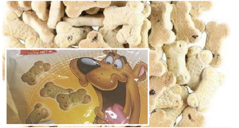 cibo oer cani