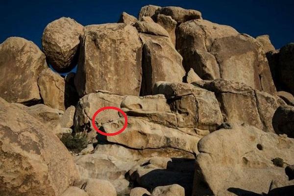 Bambina tra le rocce: riesci a trovarla?