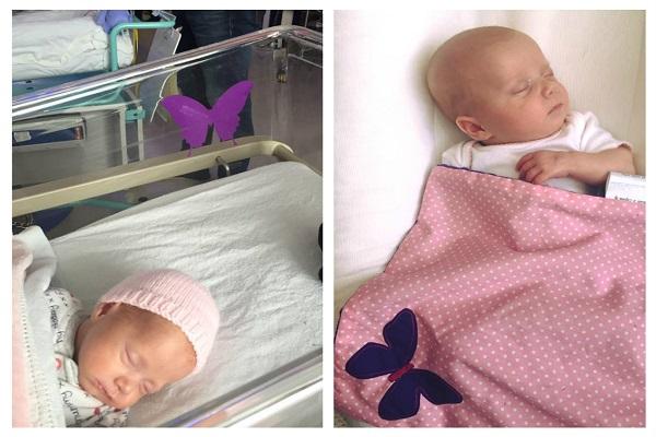 farfalla viola neonati prematuri gemelli