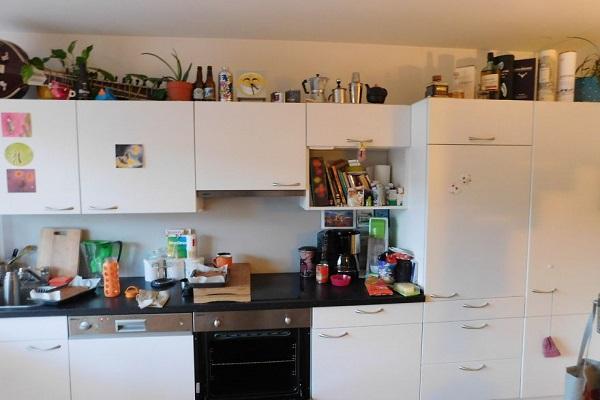 trova il gatto in cucina
