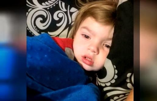 Paralisi da morso di zecca: la storia di Collin