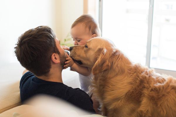 Come accogliere il neonato quando in casa vive un cane