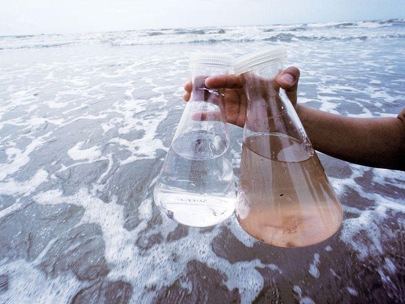 Quali sono i pericoli del mareFoto: © Karen Kasmauski / Corbis