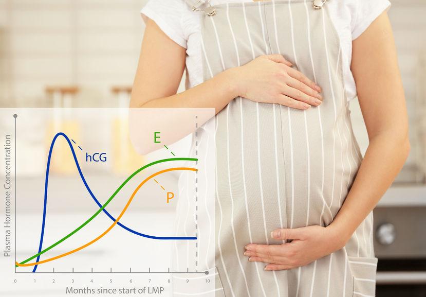 test combinato in gravidanza