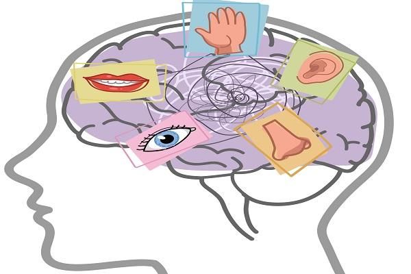 Sistemi rappresentazionali: siete persone visive, uditive o cinestesiche?