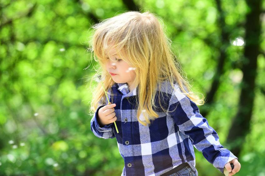 I giardini dei bambini, cosa sono