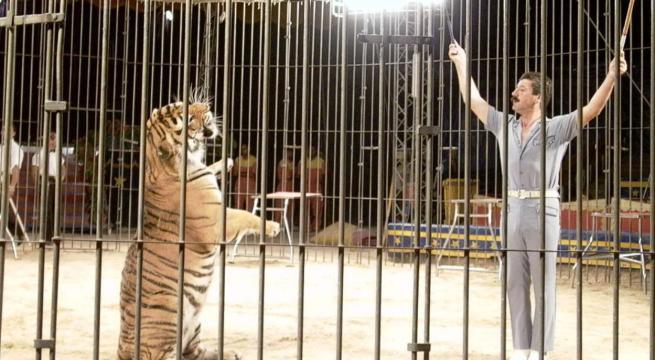 Tigri uccidono il domatore, Ettore Weber in una foto di archivio