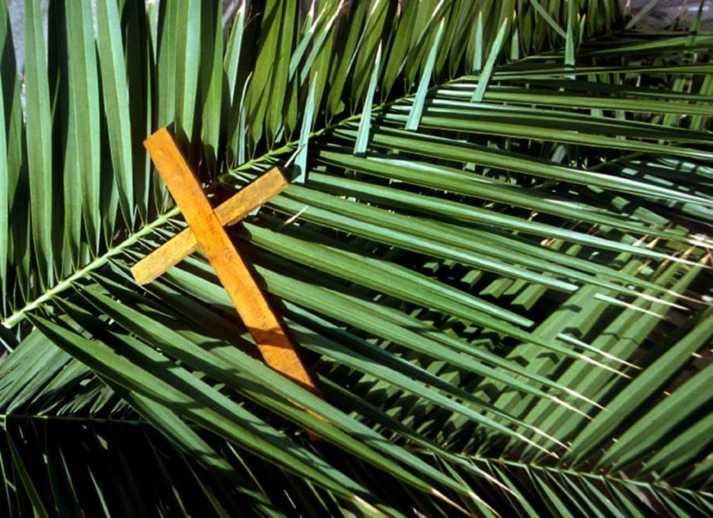 Come sostituire le palme benedette