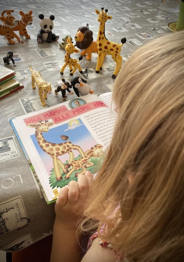 Animali del mio zoo: collezione di libri e personaggi per imparare giocando. ©VitadaMamma