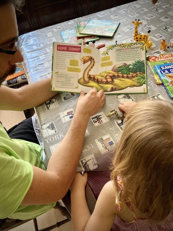 Animali del mio zoo: collezione di libri e personaggi per imparare giocando