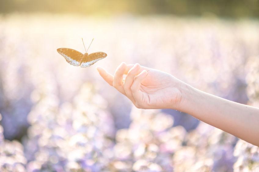 10 buoni propositi per essere farfalla che rinasce e non bruco che muore nel bozzolo.