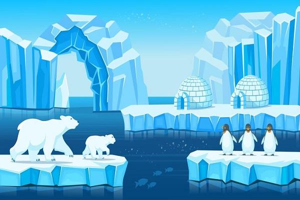 Orsi polari e pinguini: trova l'errore in questa immagine
